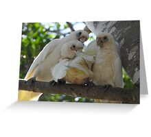 Dad and Mum and Baby make a family Greeting Card