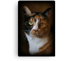 The One And Only Canvas Print