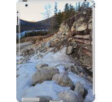 Uncovered by flood iPad Case/Skin