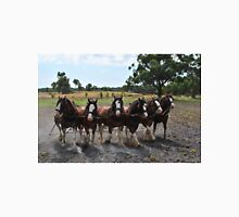Team of 6 Horses Unisex T-Shirt
