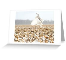 Goddess of the snowy fields Greeting Card