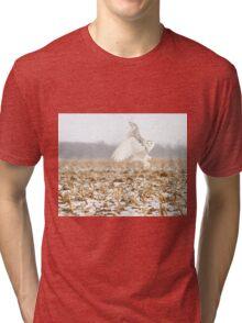 Goddess of the snowy fields Tri-blend T-Shirt