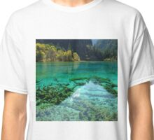 JIUZHAIGOU VALLEY 2 Classic T-Shirt