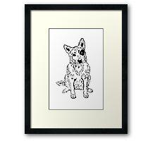 Dawg Framed Print
