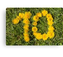 number ten drawn with dandelion on the lawn Canvas Print