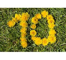 number ten drawn with dandelion on the lawn Photographic Print