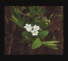 White Spring Flower Baby Tee