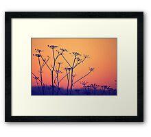 Wild and Precious Life Framed Print