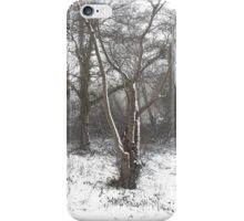 SNOW SCENE 7 iPhone Case/Skin
