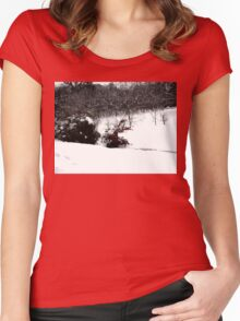 SNOW SCENE 6 Women's Fitted Scoop T-Shirt