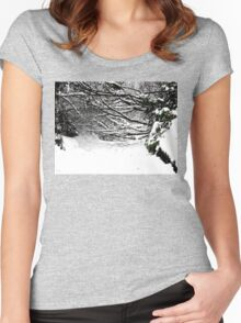 SNOW SCENE 5 Women's Fitted Scoop T-Shirt