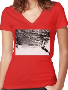 SNOW SCENE 5 Women's Fitted V-Neck T-Shirt