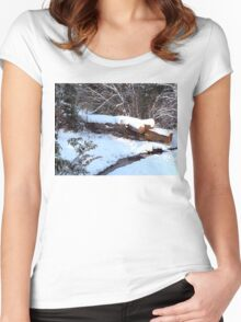 SNOW SCENE 9 Women's Fitted Scoop T-Shirt