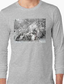 SNOW SCENE 4 Long Sleeve T-Shirt