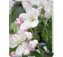 Spring Flower Series 41 iPad Case/Skin
