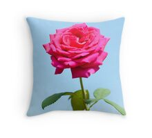Beautiful pink rose on sky background Throw Pillow