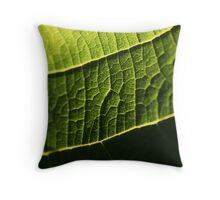 Illuminated Leaf 2 - Nature Photography Throw Pillow
