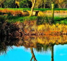 Springtime reflection Sticker