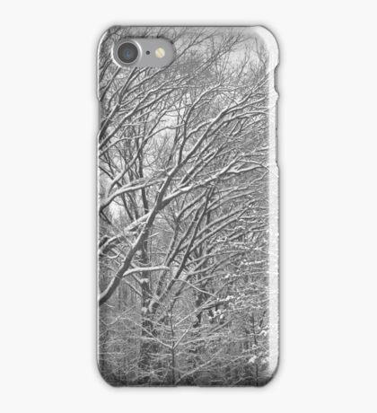 Dusting iPhone Case/Skin