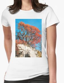 Autumn Colours in the Carso Womens Fitted T-Shirt