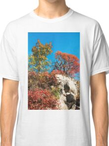 Autumn Colours in the Carso Classic T-Shirt