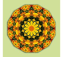 California Poppies, Flower Mandala, Floral mandala-style  Photographic Print