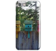 Birdhouse Blues iPhone Case/Skin
