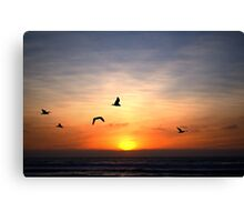 The Freedom Of Flight Canvas Print