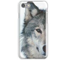 Animal iPhone Case/Skin