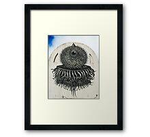 Cozumel Bodega Creature Framed Print