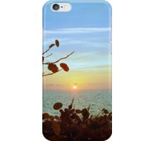 Biscayne Sunset iPhone Case/Skin