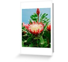 Protea Cynaroides Flower Greeting Card
