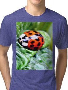 do you mind i.m eating Tri-blend T-Shirt