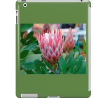 Protea Cynaroides Flower iPad Case/Skin