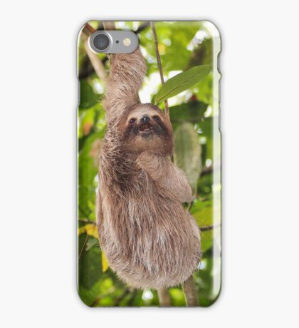Funny sloth hanging from a branch in the jungle iPhone Case/Skin