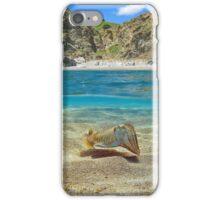 Mediterranean cove with cuttlefish underwater iPhone Case/Skin
