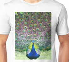 Peacock display Unisex T-Shirt