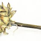 Artichoke heart dried art painting by Sarah Trett