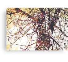 Hope modern tree flower floral nature painting art design Canvas Print