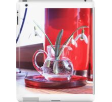 Red Decoration - Macro Photography iPad Case/Skin