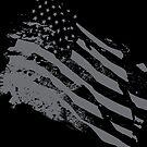 USA Flag by AJ Paglia