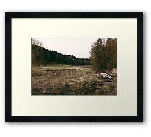 Rural forest landscape photography Framed Print