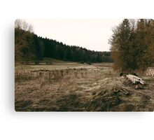 Rural forest landscape photography Canvas Print