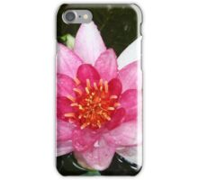 Pink Water Lily Close-up iPhone Case/Skin