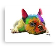 Colorful Bulldog Canvas Print