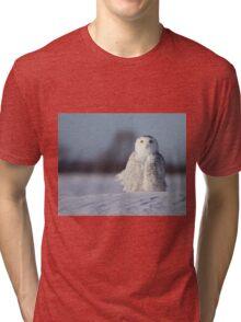 Saint Snowy Tri-blend T-Shirt
