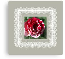 Country Rose Variegated Canvas Print