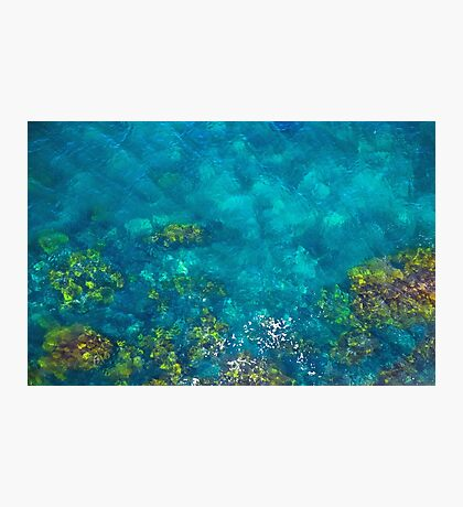 Green and Brown in the Aqua Blue Sea Photographic Print