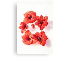 RED challenge  Canvas Print