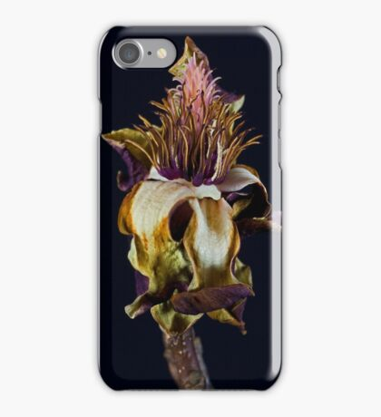 The Bloom is off the Rose iPhone Case/Skin